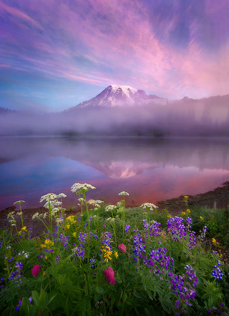 Photograph Beauty by Marc  Adamus on 500px