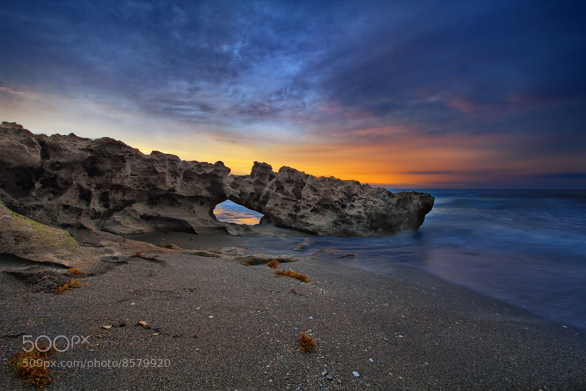Photograph The Serpent's Egg by Alchimie Photographique on 500px