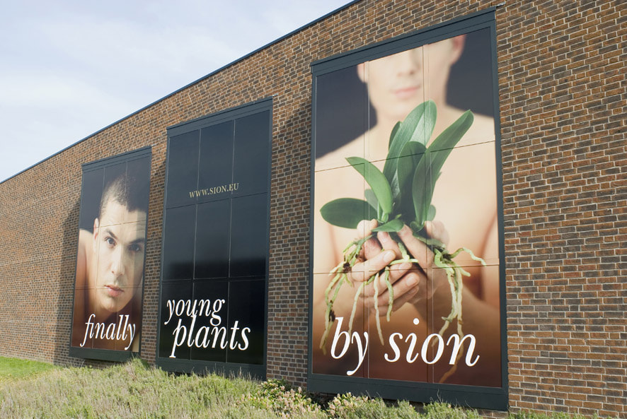 Client: Sion orchids /Agency Mirakuleus  [usage: Billboard]