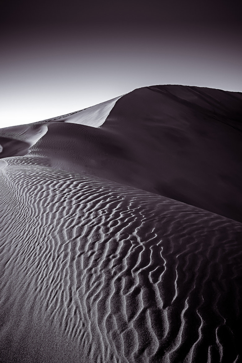 Photograph Desert dunes by Ramon Grosso  on 500px