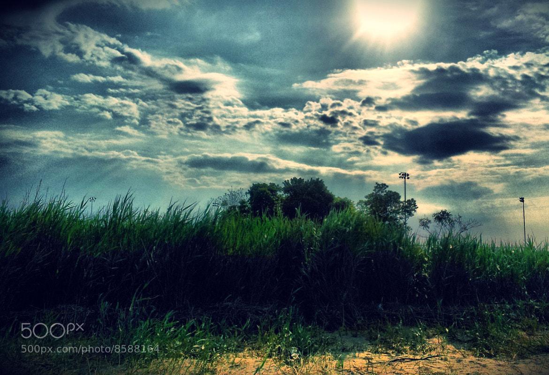 Photograph Green Fields by Tony Fafa on 500px