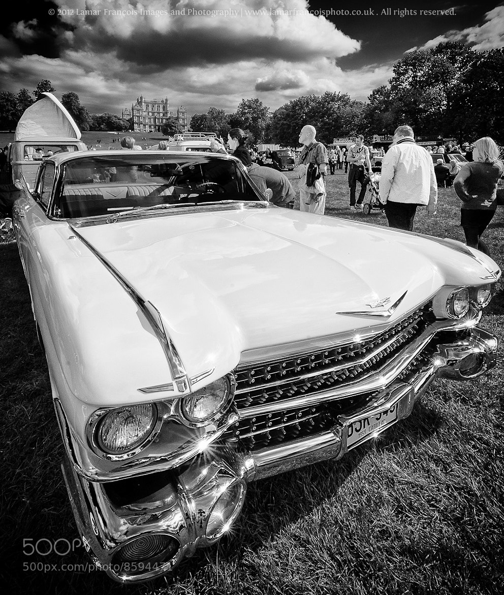 Photograph Muscle Cars on display by Lamar Francois on 500px