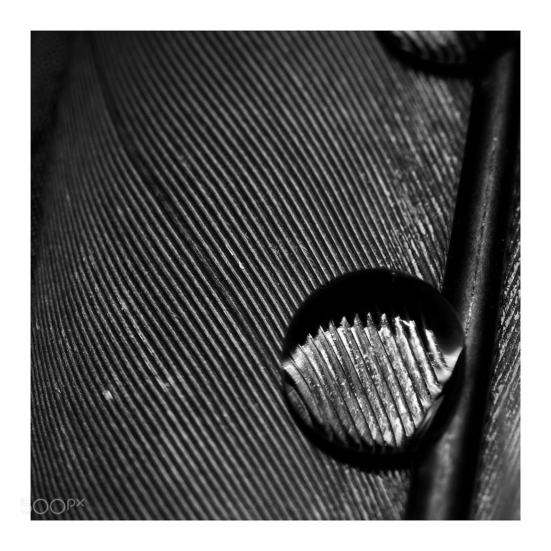 Photograph Night by Jacek Smoter on 500px