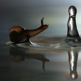 Snail and the raindrop by Vadim Trunov (vadimtrunov)) on 500px.com