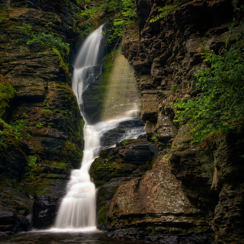 Photograph Shower Of Eden by Neil Shapiro on 500px
