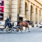 """City """"Race"""" in Firenze"""