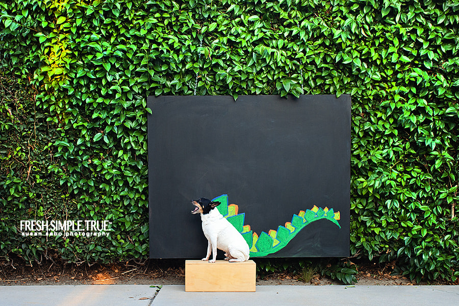 T has been modeling with my chalk drawings for a few weeks now, this is his second; taken a few weeks ago.