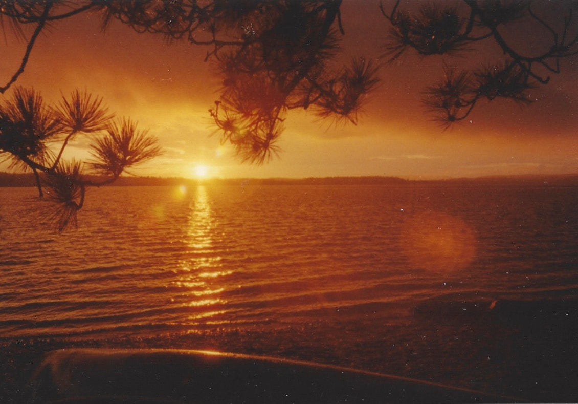 Photograph Film Sunset by Aiken Fisher on 500px