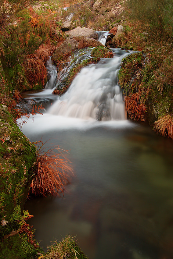 Photograph downstream by Paulo Rocha on 500px