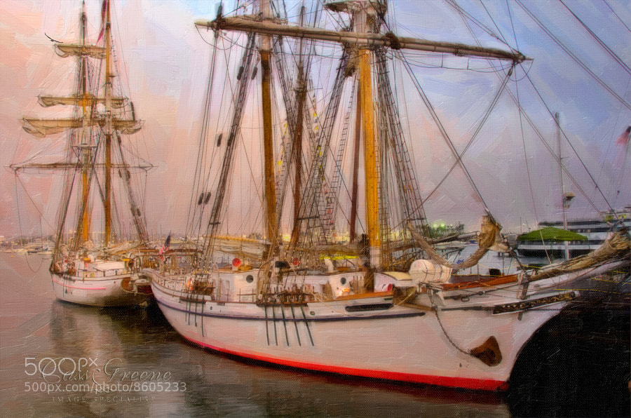Photograph Tall Ships by Cass Peterson Greene on 500px