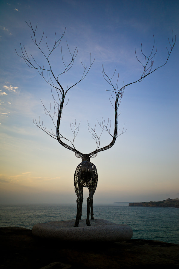 Photograph Sculpture by the Sea by Mark Keelan on 500px