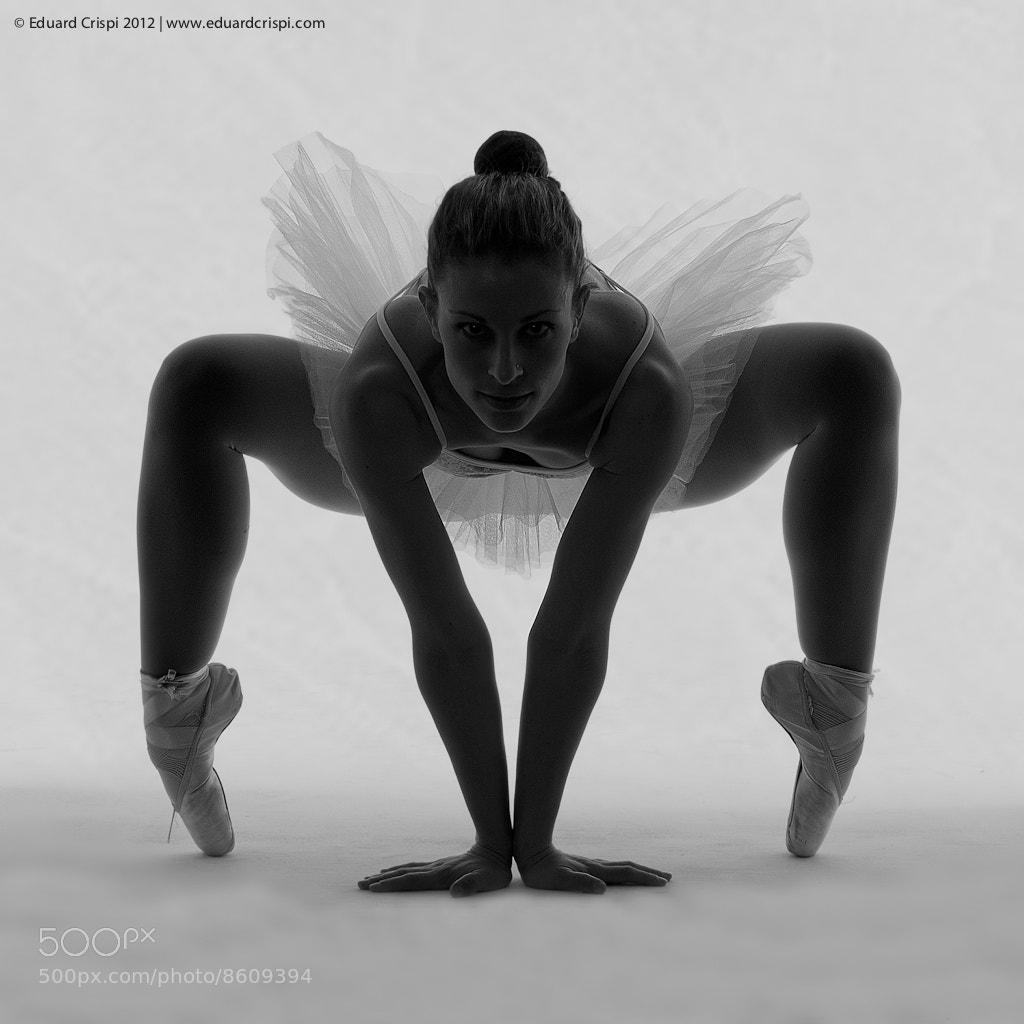 Photograph Ballerina by Eduard Crispi on 500px