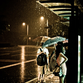 rain by Chi Au (chi)) on 500px.com