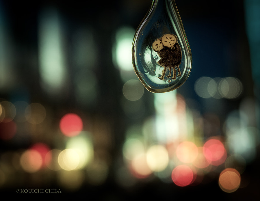 Excursion of the night by Kouichi Chiba on 500px.com