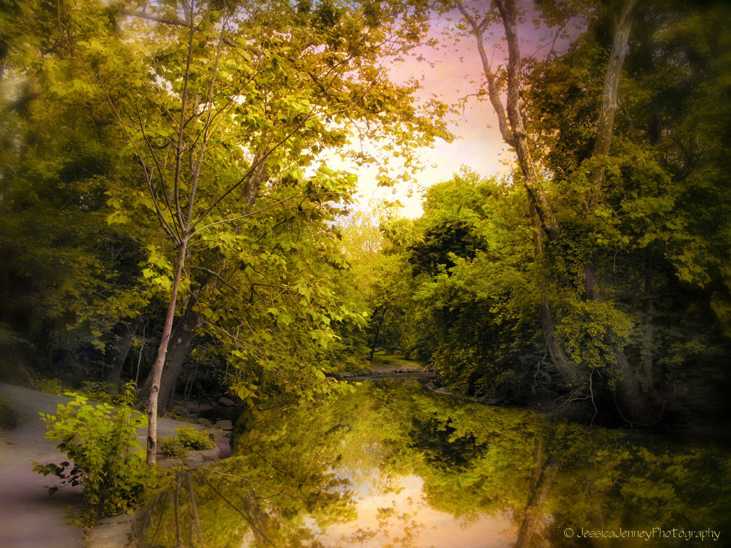 Photograph Reflecting on Spring by Jessica Jenney on 500px