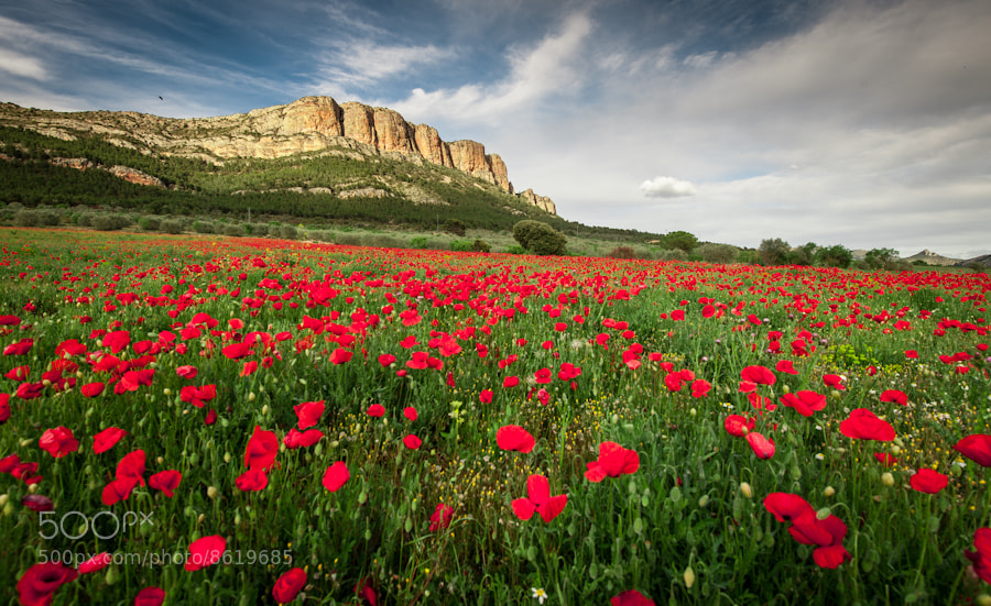Photograph Baldellou valley by Manel  Lanzón on 500px