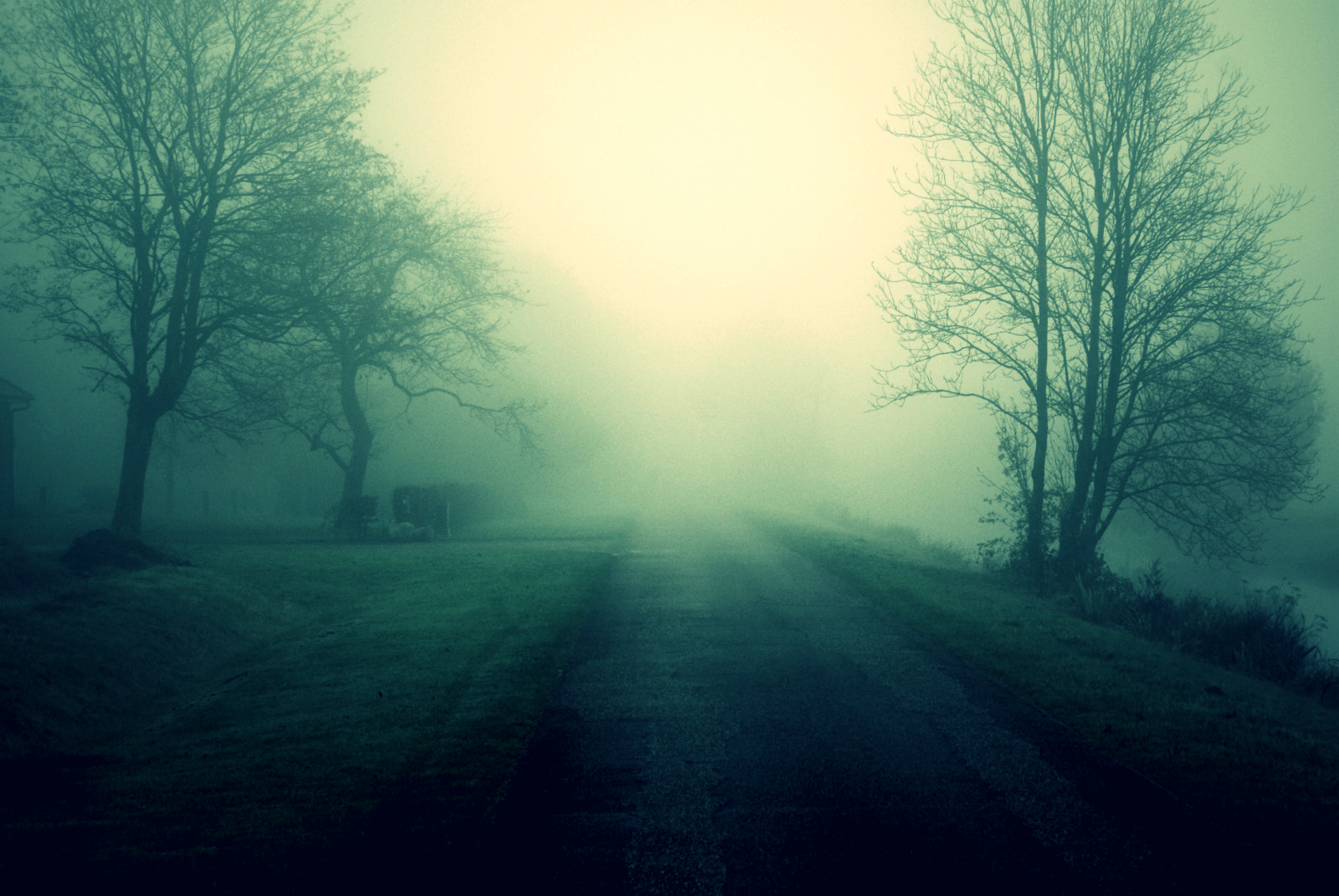 Photograph The Green fog by op drie on 500px