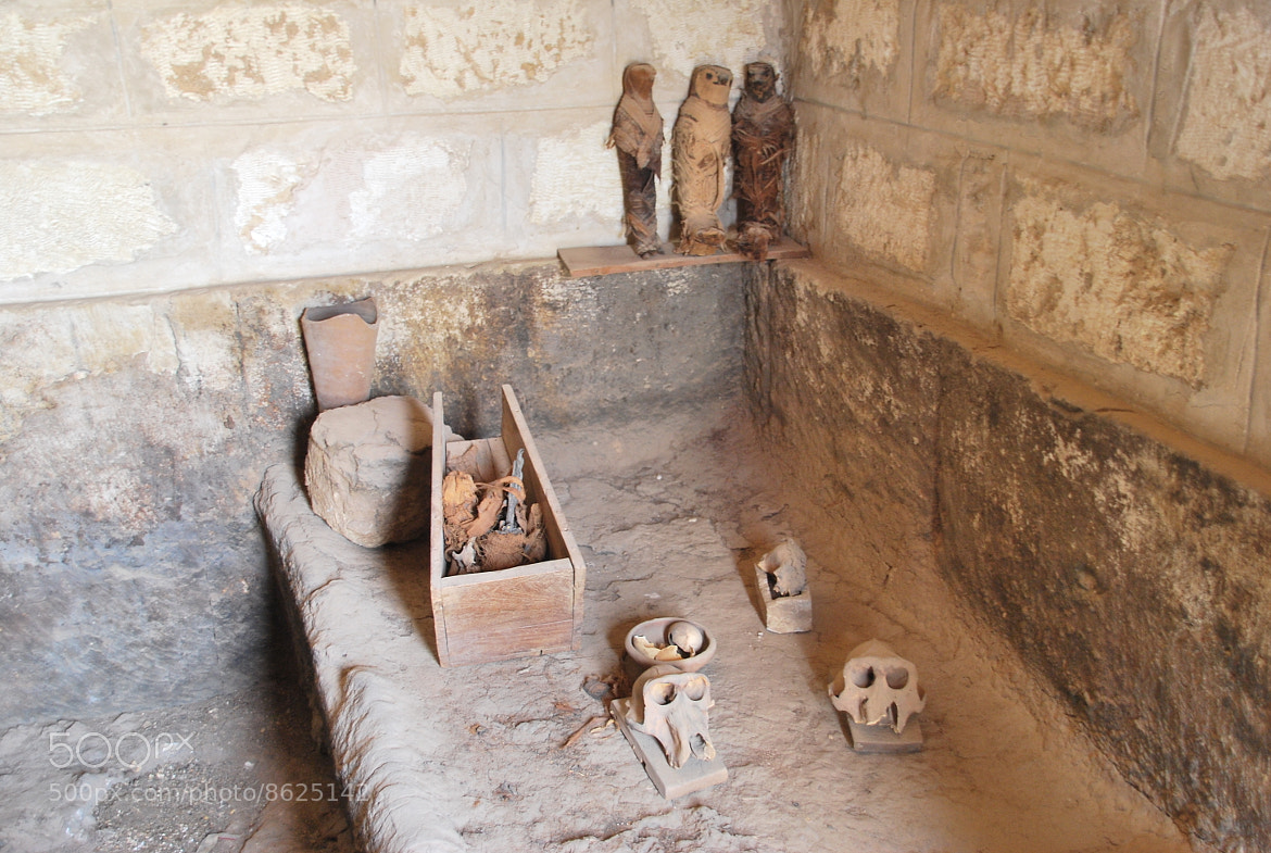 Photograph Real Mummy by Sam Azmy on 500px