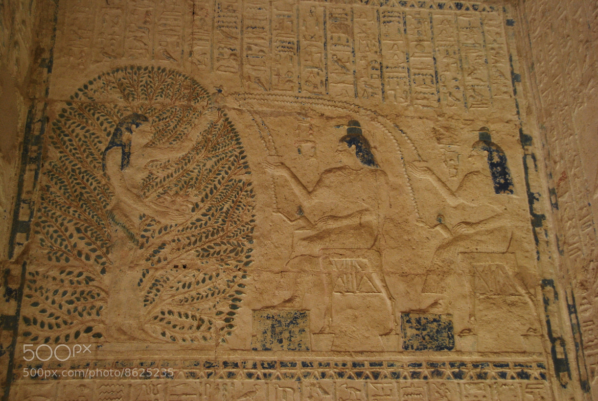Photograph Baptism in Ancient Egyp by Sam Azmy on 500px