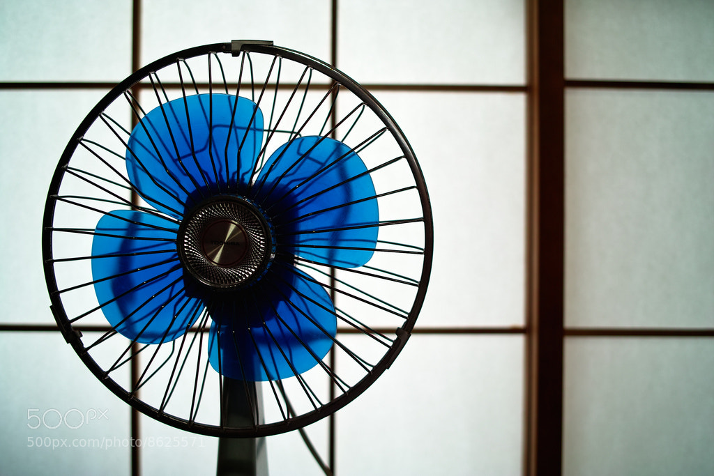 Photograph fan by ka_tate on 500px