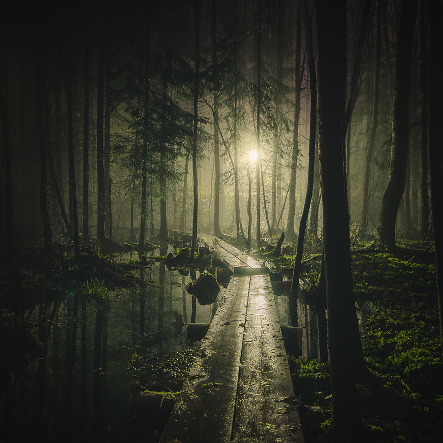 Photograph Pathway by Mikko Lagerstedt on 500px