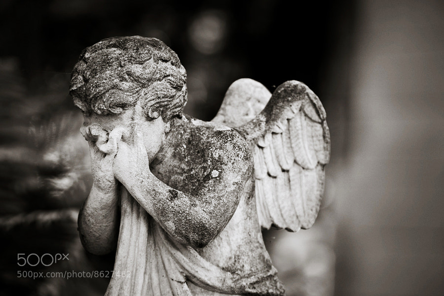 Photograph The angel is crying by Nastas'ya Vandalkovskaya on 500px