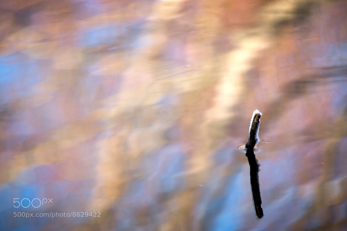 Photograph Above Water by Brad Grove on 500px