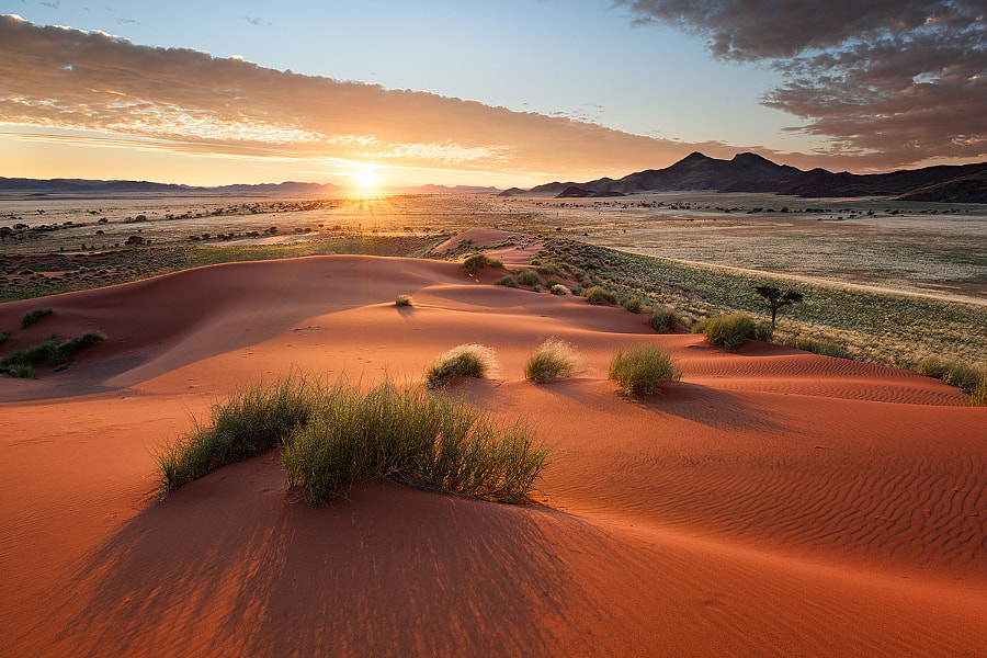 The Namib Rand by Hougaard Malan on 500px.com