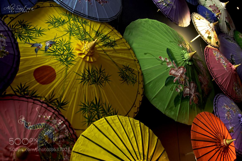 Photograph Umbrellas by Alex Santosa on 500px