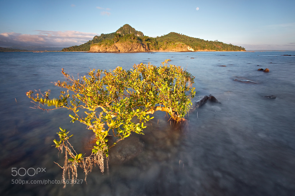 Photograph MOONRISE IN GREEN by Edwin Martinez on 500px
