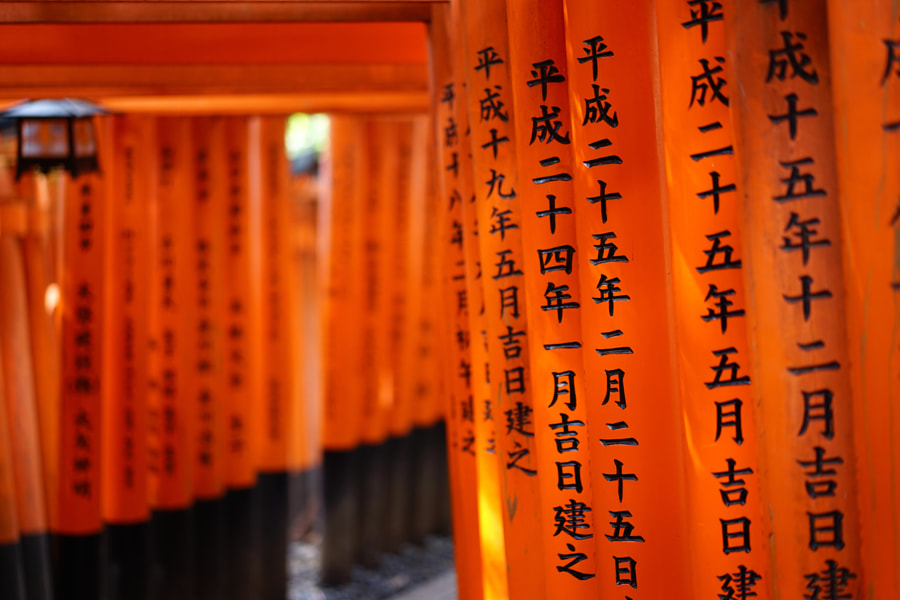 Senbon Torii gates by LIU HAN-LIN on 500px.com