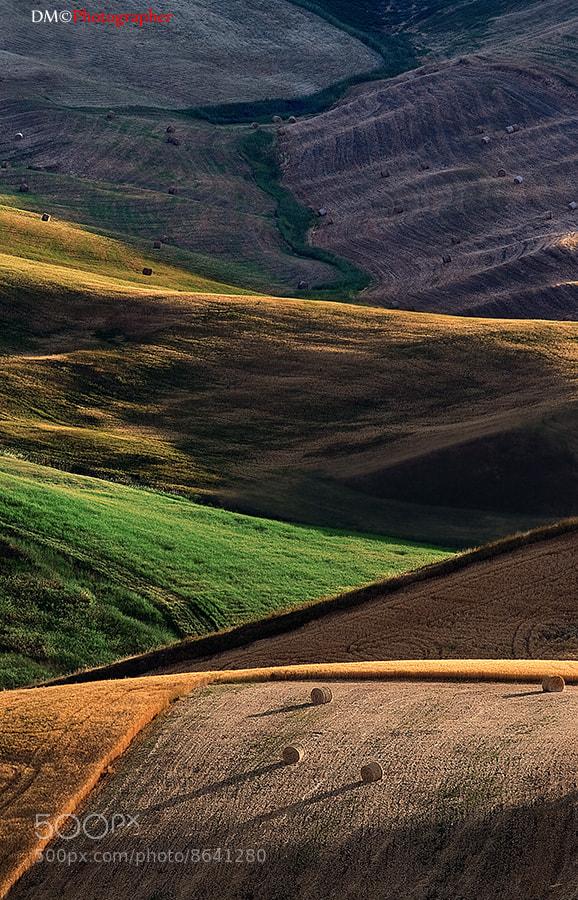 Photograph Contrasti by Maurizio Di Maria on 500px