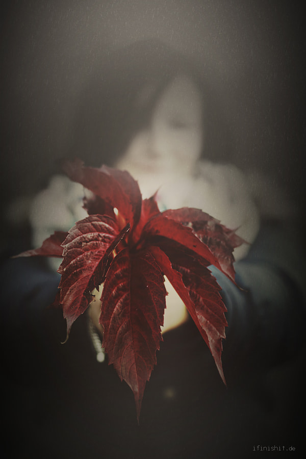 Photograph autumn 2014 by Tatjana Otulak on 500px