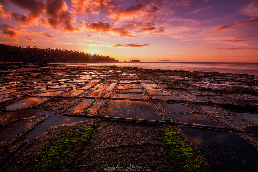 Photograph Tessellated Pavement by Lincoln Harrison on 500px