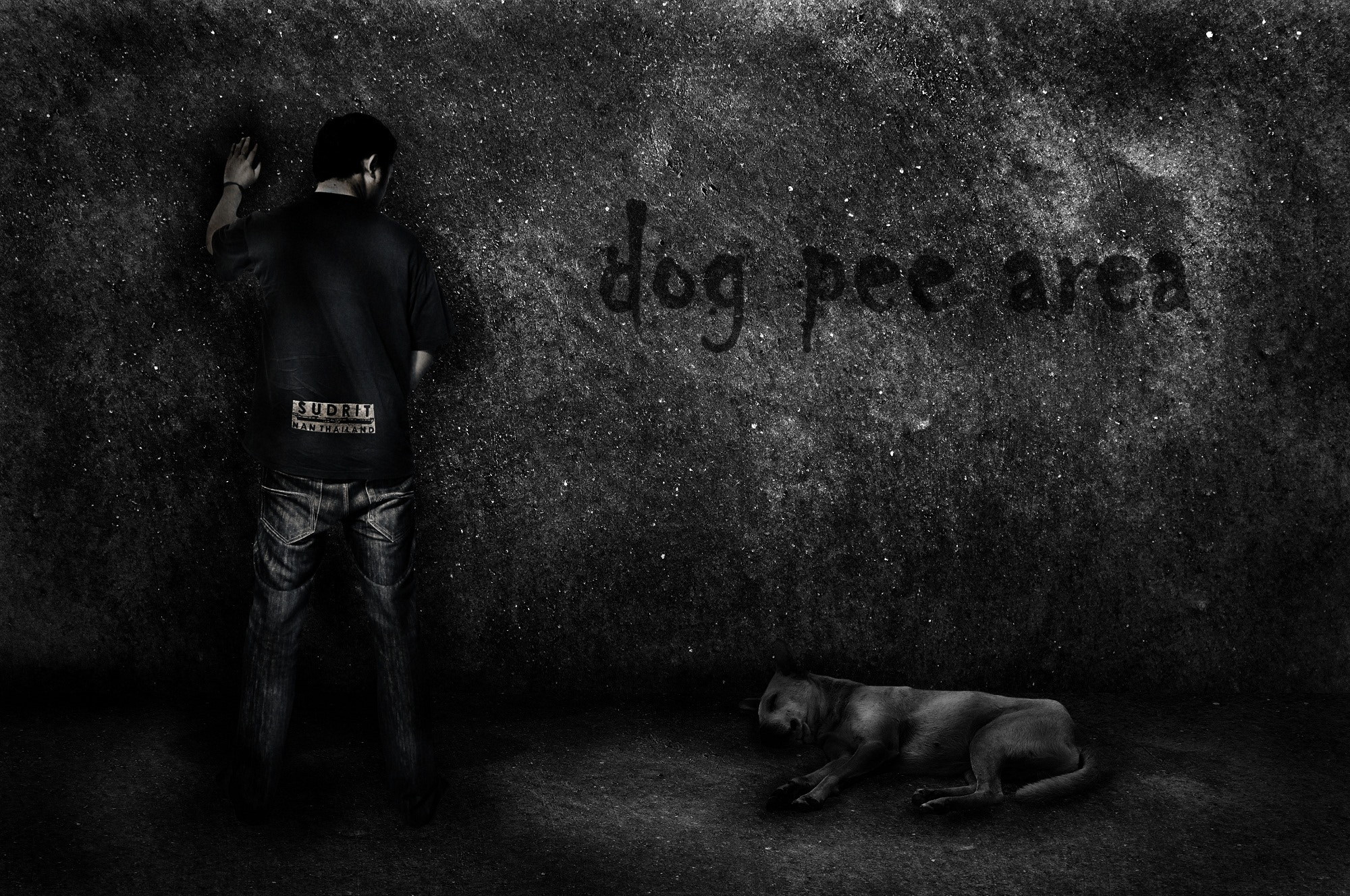 Photograph dog pee area by Attapon Ramkomut on 500px
