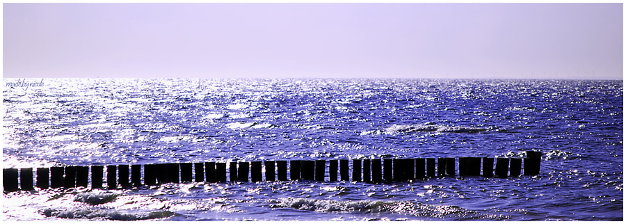Photograph Wasser by made by nicole on 500px