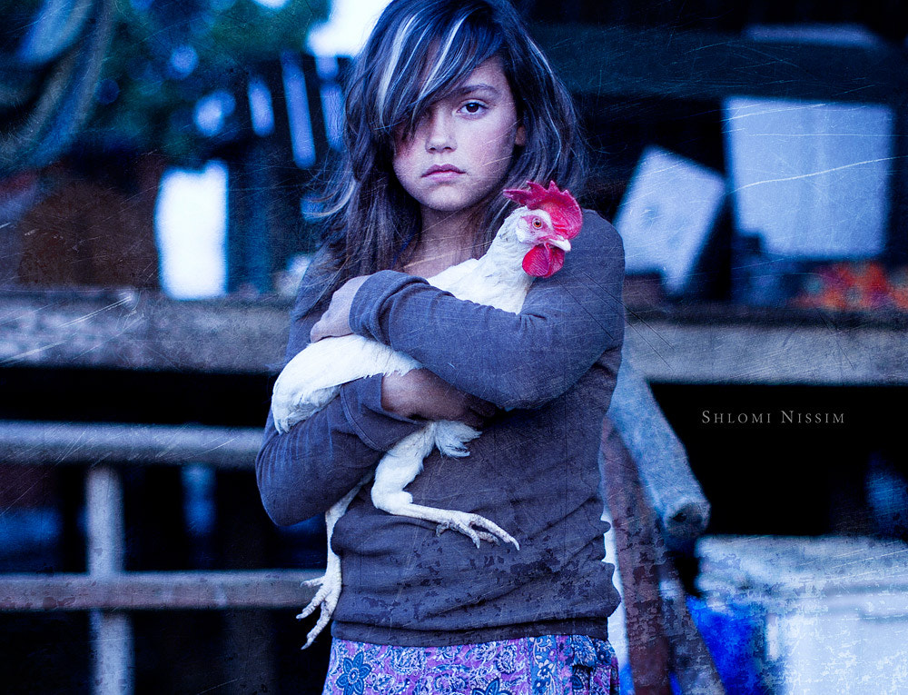 Photograph A Portrait of Girl & Chicken by shlomi nissim on 500px