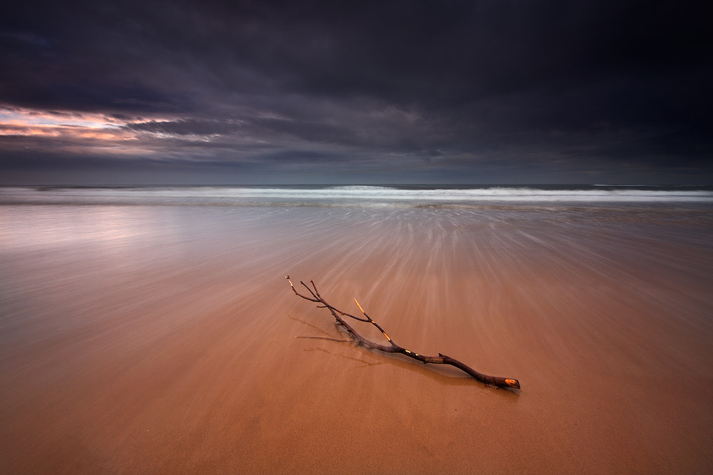 Photograph Washed Ashore by Chris Miles on 500px