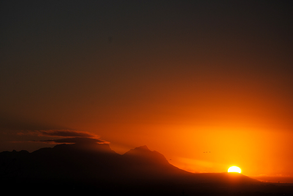 Photograph Double tablecloth at sunset by Laurette van der Merwe on 500px