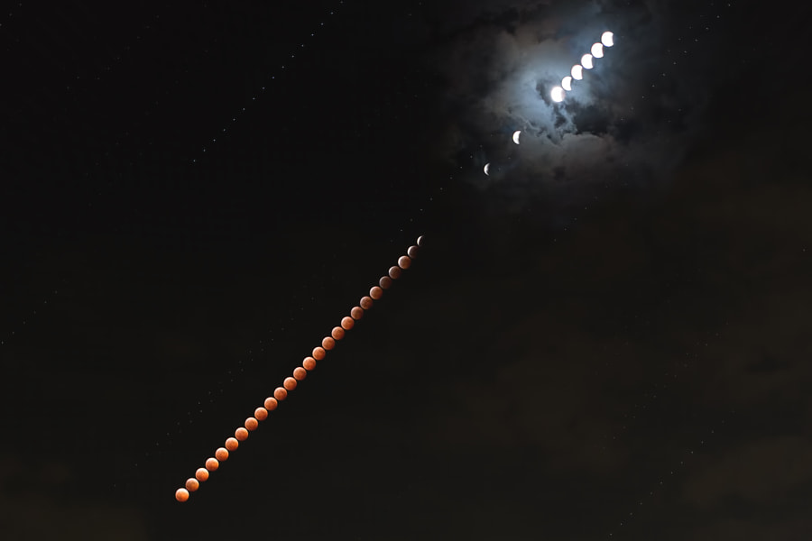 It was not good weather condition. But I could take the picture of eclipse of the latter half at 8th Oct. 2014. (at 2.5-minute interval)