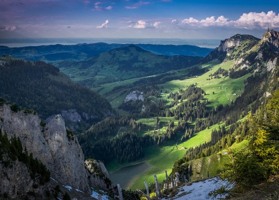 Swiss Views II