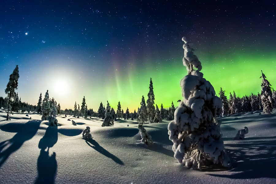 Lights of winter by Mikko Karjalainen on 500px.com