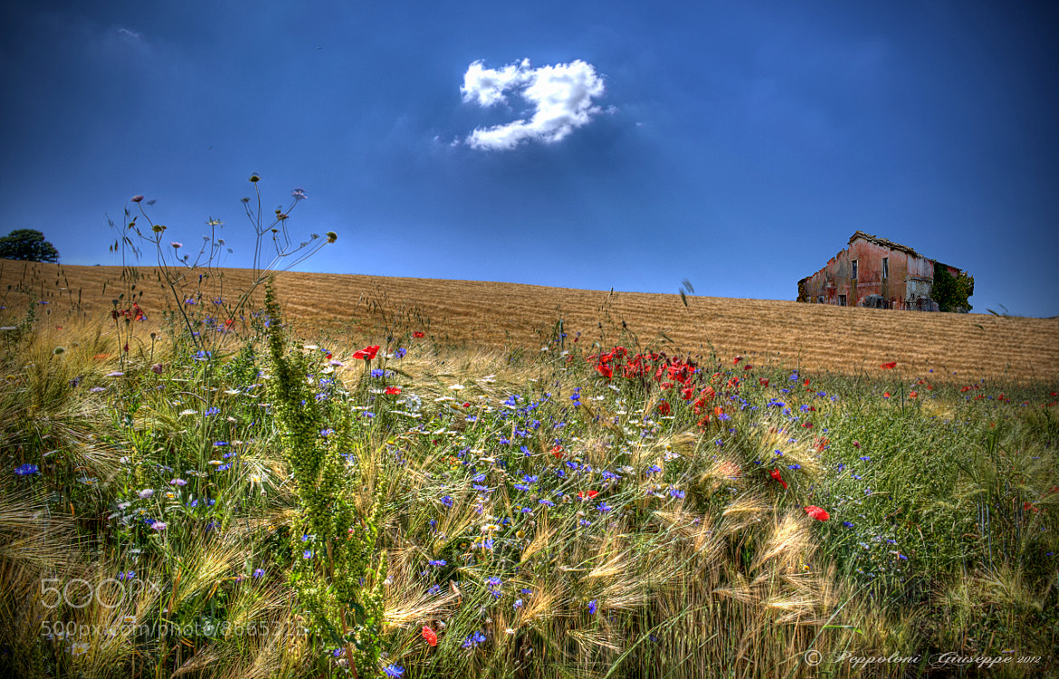 Photograph The white cloud by Giuseppe  Peppoloni on 500px