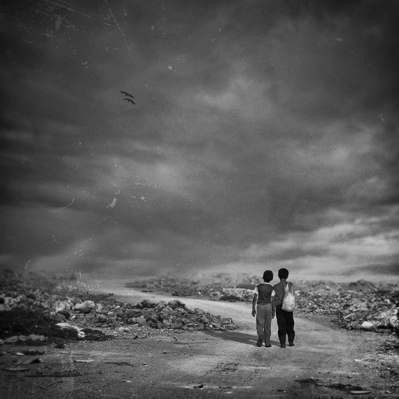 Photograph Forever Together by Hossein Zare on 500px