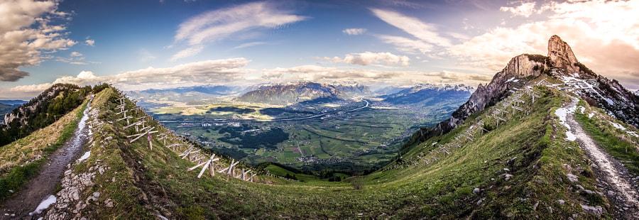 Swiss Views V