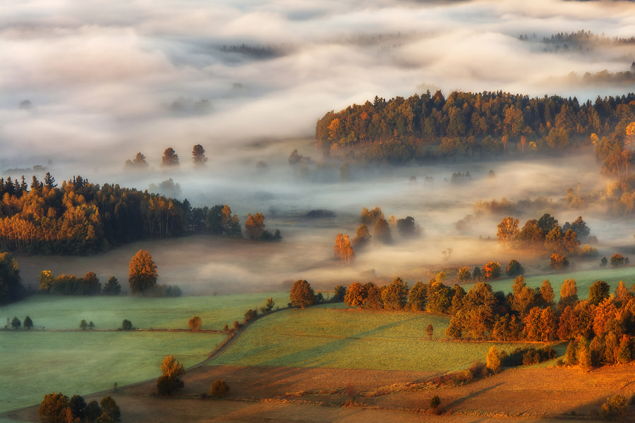Photograph Autumn aura by Szymon Bialic on 500px