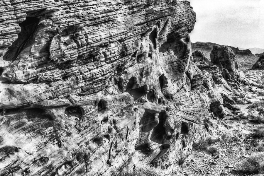 Photograph The desert in B&W by David Edenfield on 500px