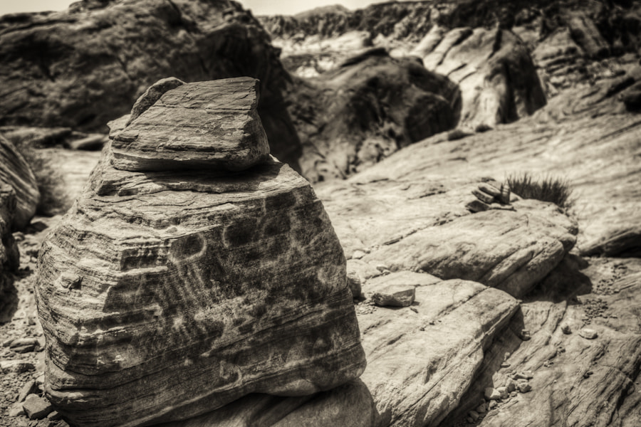 Photograph The desert in Sepia by David Edenfield on 500px
