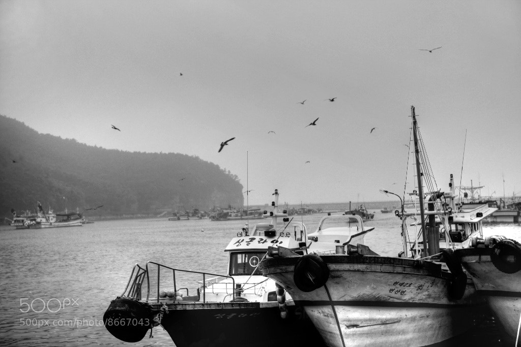 Photograph Port by Reonis  on 500px