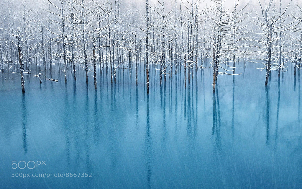 Photograph Blue Pond - The WallPaper for Apple Inc. by Kent Shiraishi on 500px
